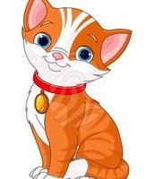 The Lonley Cat