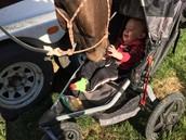 Love my moms horse!