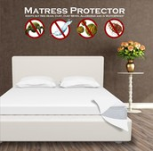 Our Mattress Protectors
