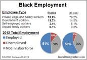 Black Employment 2012
