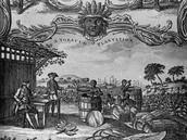 A Tobacco Plantation