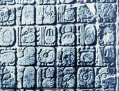 Do you know how long the Mayans have existed?