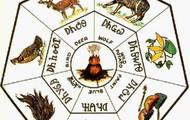 Multiple clans