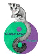 Az Sugar Glider Rescue