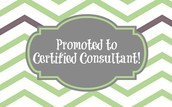 CERTIFIED CONSULTANT!
