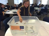 STEM: Testing Submersible Instruments