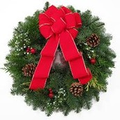 Congratulations Kiernan and Olivia!  Top Wreath Sales Persons!