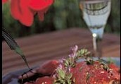 Why a Wine and Food Tour
