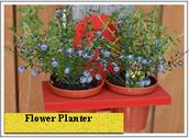 Flower Planter Activity