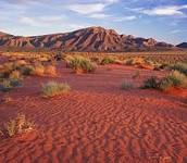 a desert in Austraila