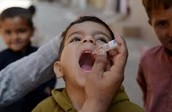 A child receiving an oral dose of the polio vaccination.