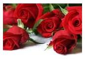 Valentine's Day Pre - Order Event