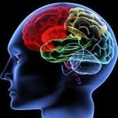 לרוב האינטליגנציה תקינה, ובמקרים מסוימים אף גבוהה מהממוצע