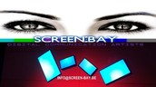 Screenbay pubscreens