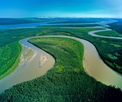 THE MACKENZIE RIVER HAS ONE OF THE LARGEST WATERSHEDS THROUGHOUT NORTH AMERICA!