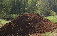 plus dirt