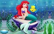 SIRENATXOA Flounder arrainarekin