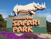 You can visit the San Diego Safari Park!