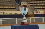 Copa del Rei Masculina