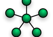 2.A star network