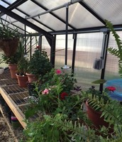 Greenhouse and Agricultural Production Services