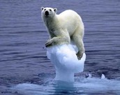 Over klimaten
