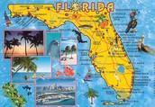 Fui a Florida.