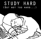 Work Hard, Study Harder