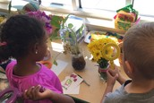 Using magnifying glasses to explore plants