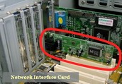Network Card (Function)