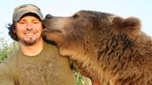 Bears as pets