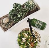 Off The Vine - 10% off Food Items (Quinoa Bowls, Salad, Spring Rolls)
