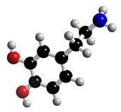 בוא שמע על ההורמון דופמין