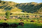 70,446 acres
