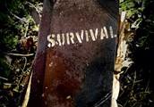 Surviving academy,