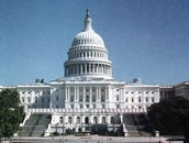 Article I - The Legislative Branch (LAZY)