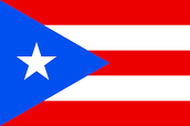 puerto dollar flag