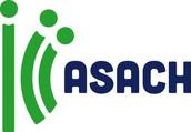 Agrupación Socio-Ambiental Chillán (ASACH)