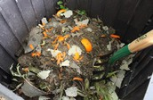 What your compost will look like when you start