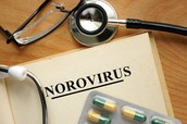 When was the Norovirus discovered?