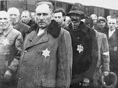 Jews in Auschwitz