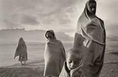 Campo de Korem, Etiópia [1984]