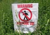 """Say """"No"""" to pesticides"""