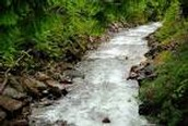 Possible solutions to solve water pollutions in a country