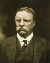 Theodore Roosevelt (Political)