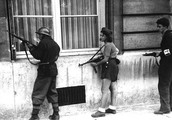 French Resistance - research + accuracy