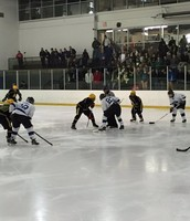 Winter Sports Teams Are Now in Action....