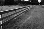 Protection for your farms, reliable fencing