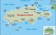 Where Kangaroo Island is located