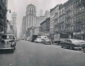 Robert Stewart's Life in New York